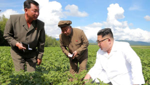 Medios estatales norcoreanos sugieren que el líder Kim Jong Un estaba visitando una granja de papas mientras el secretario de Estado de EEUU Mike Pompeo viajó a Pyongyang el 6 y 7 de julio de 2018. KCNA VIA KNS/AFP