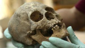 El arqueólogo Jedu Sagárnaga muestra un cráneo descubierto en una de las tumbas halladas en un cementerio inca cerca de La Paz, Bolivia, el jueves 15 de noviembre del 2018. (AP Foto/Luis Gandarillas)