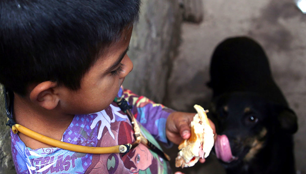 A boy named Bruno, lives in the Matadero shanty town in Quilmes, Argentina, holds a sandwich May 29, 2017. REUTERS/Marcos Brindicci
