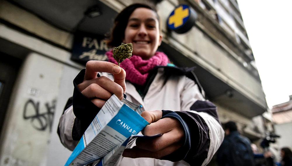 Compradora de cannabis legal muestra el producto extraído de una bolsa, en la puerta de una farmacia en Uruguay.