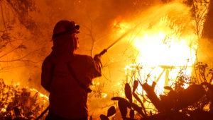 A firefighter battles the Woolsey Fire in Malibu, Calif., Friday, Nov. 9, 2018. There's no word on what sparked the Woolsey Fire and smaller Hill blaze Thursday. But winds are blamed for pushing the fire through scenic canyon communities and ridgetop homes. (AP Photo/Ringo H.W. Chiu)