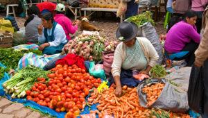 Women sitting on ground with produce at Sunday Market.