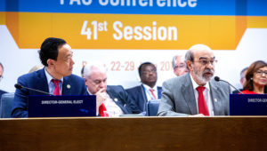 28 June 2019, Rome, Italy - Tenth Plenary Meeting. FAO Conference, 41st Session. FAO headquarters. (Plenary Hall). ©FAO/Pier Paolo Cito.