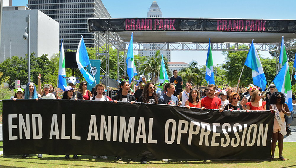 The Official Animal Rights March. | Photo: Ashley Moore (Twitter).