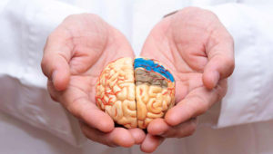 Alzheimer's, a degenerative brain disease, is the most common form of dementia. Photo: aginginplace.org
