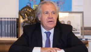 Luis Almagro, OAS Secretary General. February 13, 2020, Washington DC. Credit: Juan Manuel Herrera/OAS