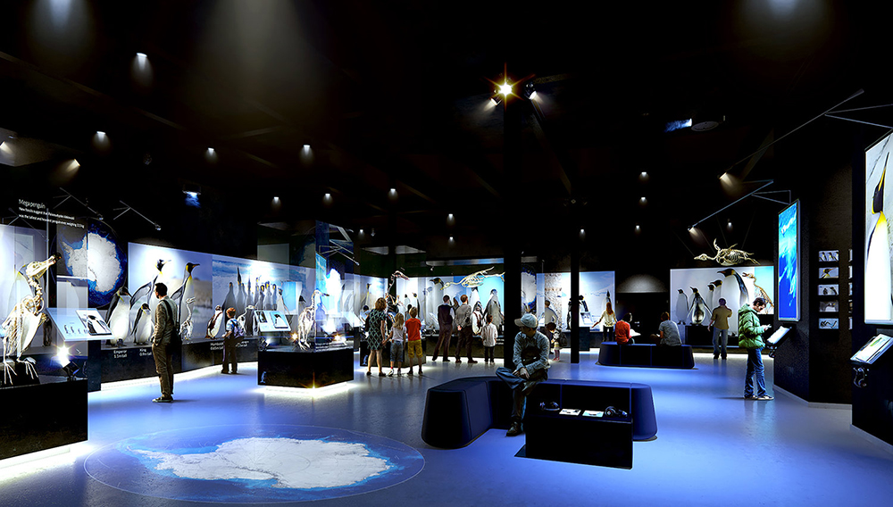 NEW BRUCE CHANGING SCIENCE EXHIBITION GALLERY. | Photo: NewBruce.org