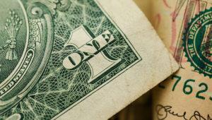 Dollar Bill Macro. | Photo: shotstash.com
