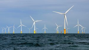 Wind farm in the Belgian part of the North Sea.   PHOTO: Hans Hillewaert